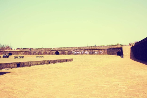 fort_6899711512_o